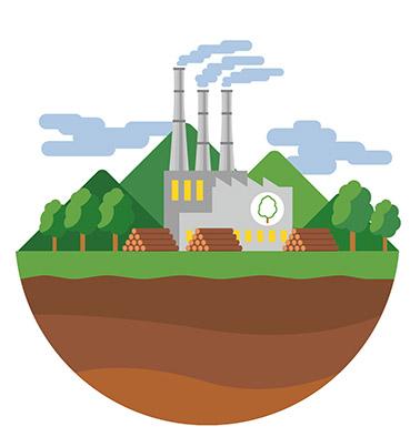 energia-da-biomasse-fonti-di-energia-rinnovabili