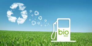 Il Futuro del Biodiesel