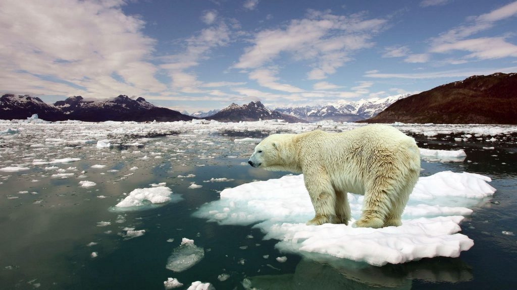 La Mano dell'Uomo sul Riscaldamento Globale